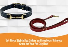 Stylish Dog Collars and Leashes of Princess Grace
